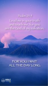 Psalm 25:5 - Bible Verses About Salvation